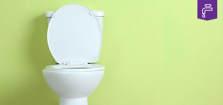 Blocked Toilet Safegas