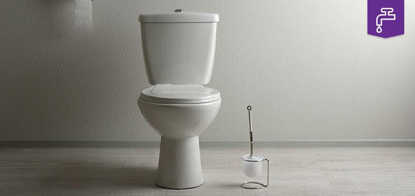 Leaking Toilet Safegas