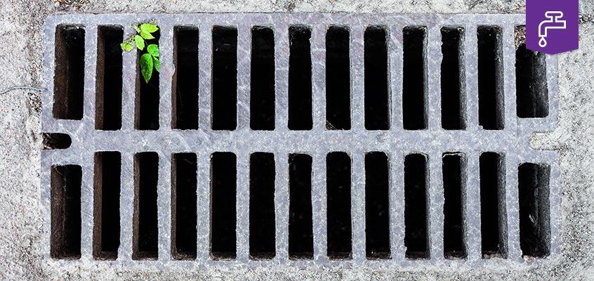 Drain and sewer maintenance